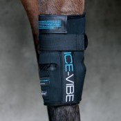 Ice-Vibe Knee Wrap by Horseware