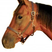 Intrepid International Horse Leather Halter made in USA