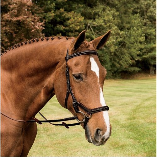 Rambo Micklem Deluxe Competition Bridle with FREE Reins