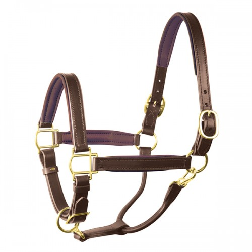 Perri\'s Padded Leather Halter