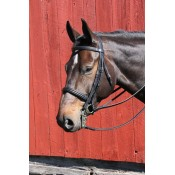 Vespucci Weymouth Double Raised Bridle