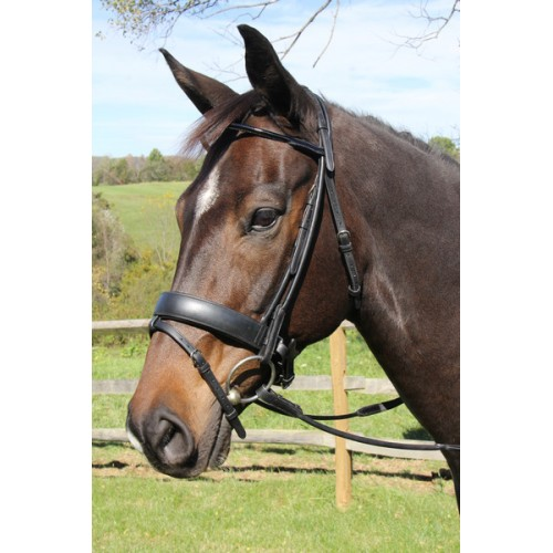 Vespucci ROLLED LEATHER SNAFFLE BRIDLE WITH FLASH, Hook Studs