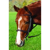 Vespucci Voyager FANCY RAISED HUNT BRIDLE