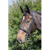 Vespucci Voyager PLAIN RAISED WEYMOUTH BRIDLE