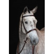 Collegiate Hunt Bridle