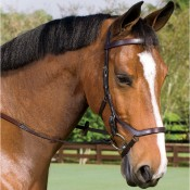 Rambo® Micklem Comp Bridle/rein