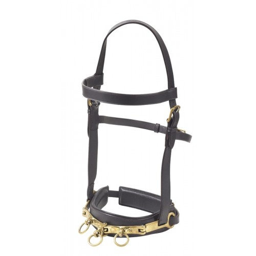 Camelot™ Leather Lunging Cavesson
