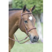 Rodrigo Pessoa® Fancy Stitched Padded Wide Noseband Show Bridle
