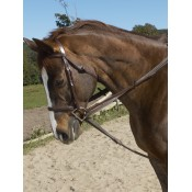 Ovation® Stretch Cord Draw Reins