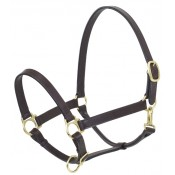 Camelot™ Stable Halter