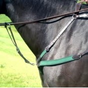 Amerigo Combination Breastplate