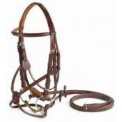 Vespucci Square Raised Figure-8 Bridle